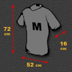 T-shirt Homme Indien Motifs Chevaux